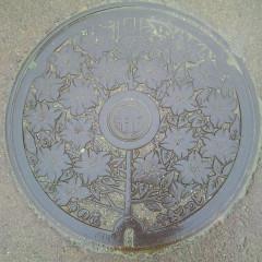 妙高市(旧新井市)
